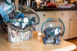 Molten Glass Vase
